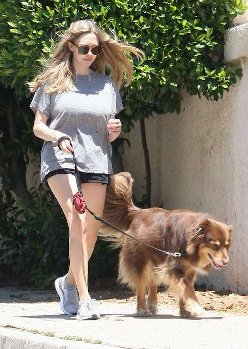 Amanda Seyfried in shorts strolling her dog in May 2017