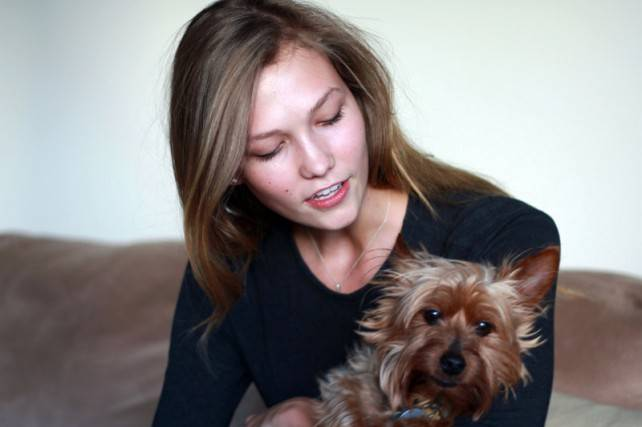 Karlie Kloss's puppy Joe
