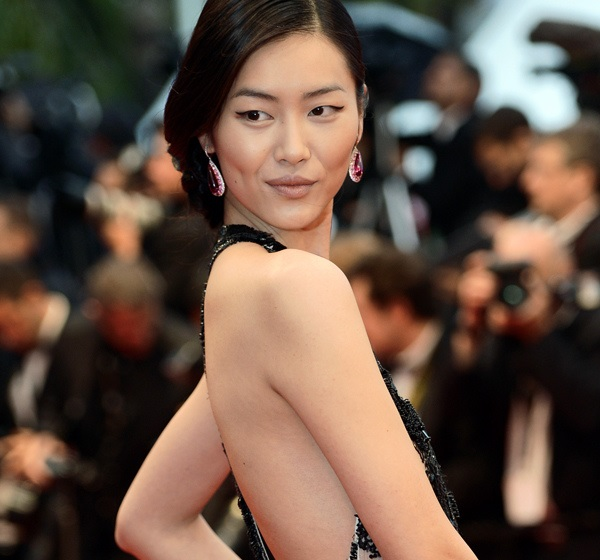 Liu Wen Model