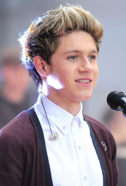 Niall Horan Hair Quiff