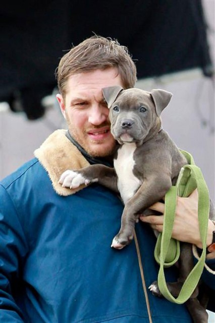 Tom Hardy with dog Max