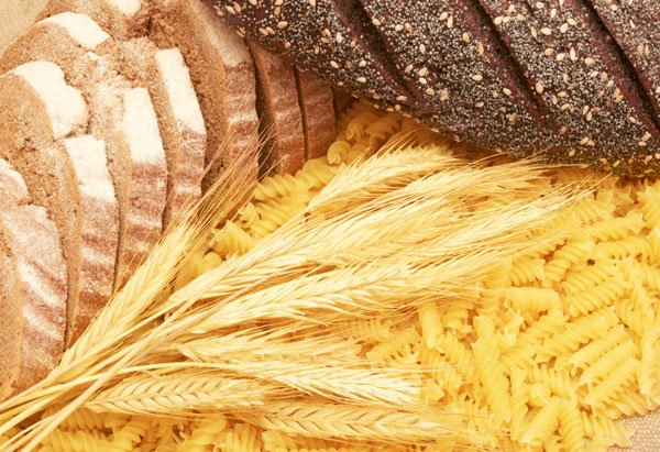 carbohydrate addict's diet plan