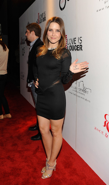 Sophia Bush height