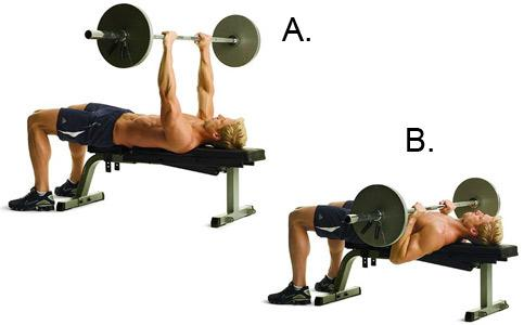 Bench Press exercise.