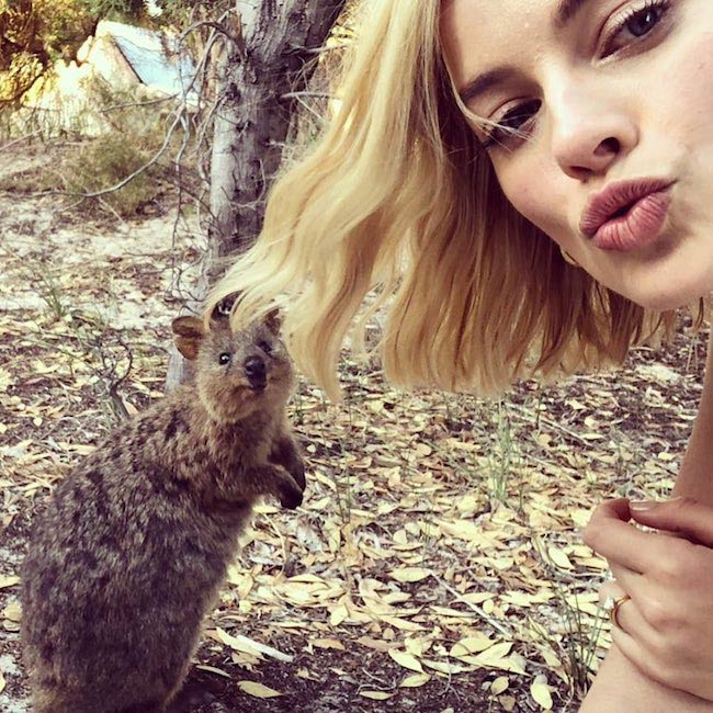Margot Robbie in a selfie with Quokka in March 2018