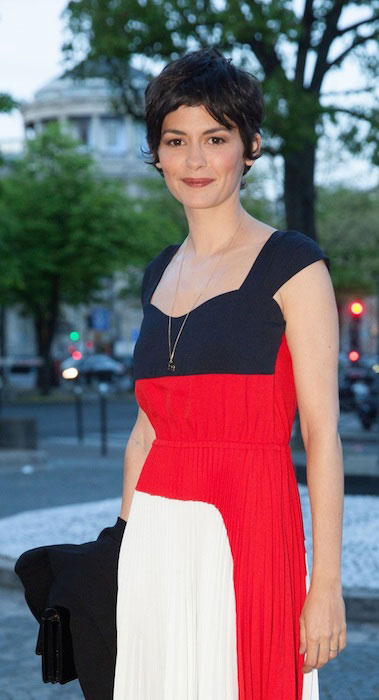 Audrey Tautou at Economic and Social Board Dinner in Paris.