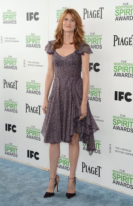 Laura Dern at the 2014 Spirit Awards.