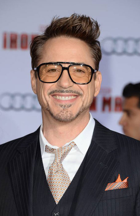 The Iron Man Robert Downey Jr