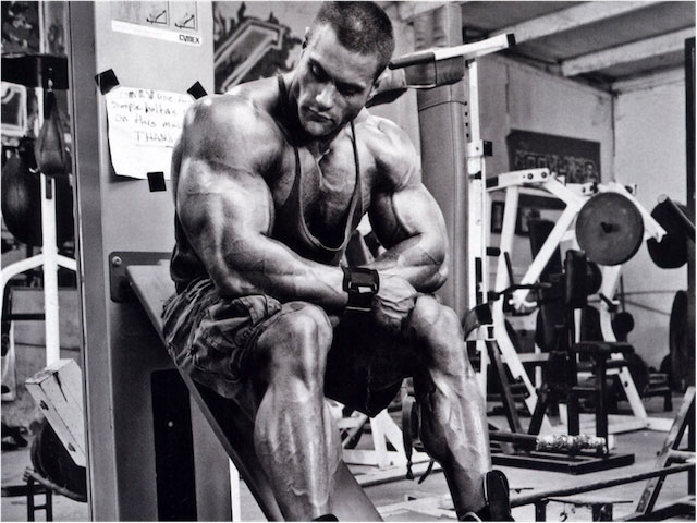 Build Quality Muscle Mass