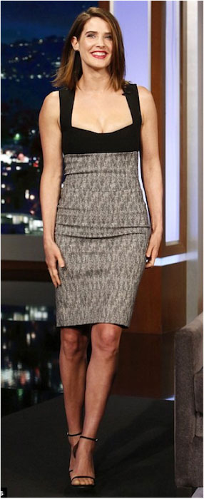 Cobie Smulders hot and lean