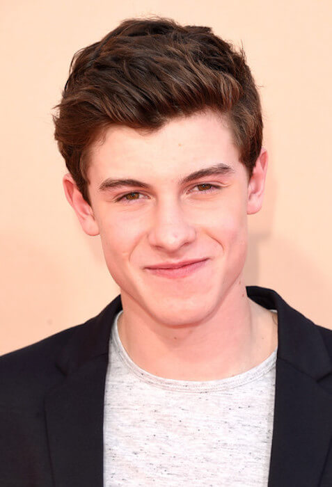 Singer Shawn Mendes attends the 2015 iHeartRadio Music Awards which broadcasted live on NBC from The Shrine Auditorium on March 29, 2015 in Los Angeles, California