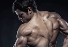 Lean Muscle - Featured Image