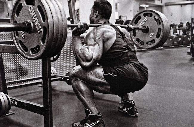 Squat, squat and squat