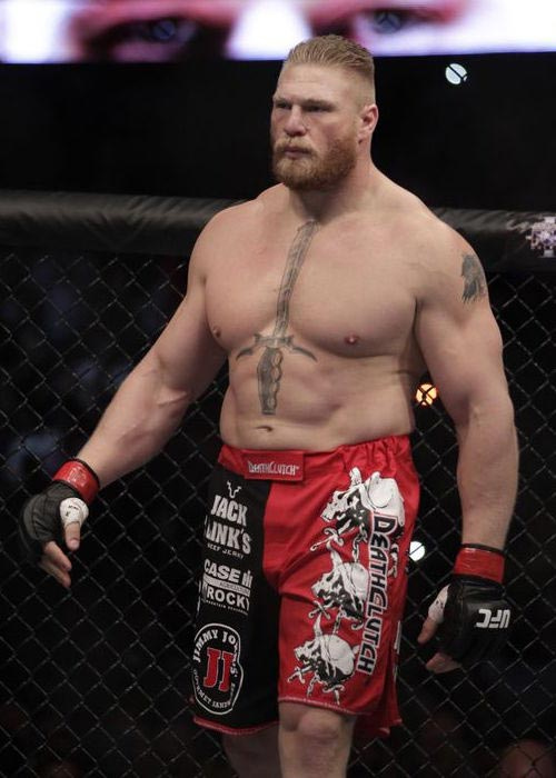 Brock Lesnar as MMA Fighter