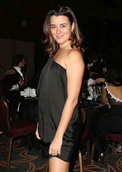 Cote de Pablo at 24th Annual Movieguide Awards Gala in February 2016