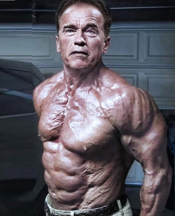 arnold schwarzenegger - photo #17