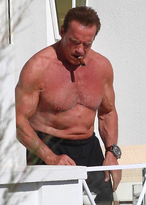 Arnold Schwarzenegger shirtless body May 2014 Cannes, France