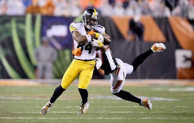 Antonio Brown against Cincinnati Bengals January 9, 2016 Ohio