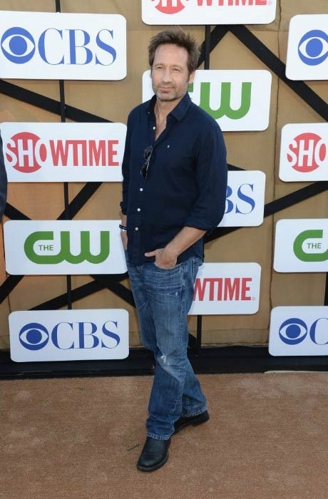 David Duchovny at the CBS and Showtime 2013 Summer TCA Party