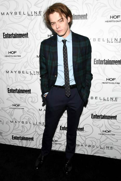 Charlie Heaton at the Entertainment Weekly Celebration event in January 2017