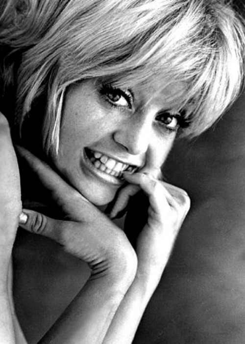 Goldie Hawn's publicity photo for the 1969 film Cactus Flower