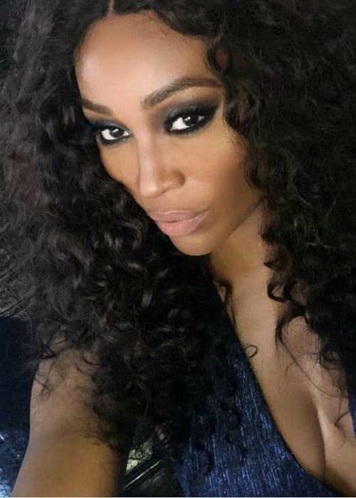 Cynthia Bailey in an Instagram selfie as seen in February 2018