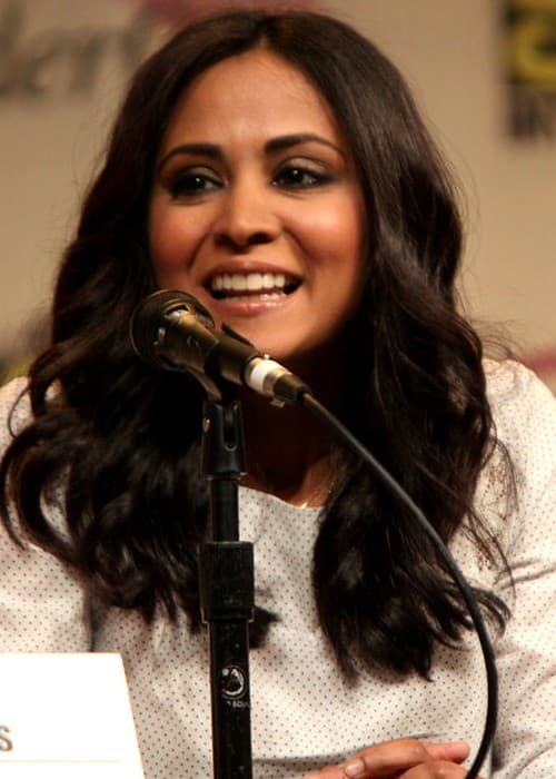 Parminder Nagra speaking at Wondercon in March 2012