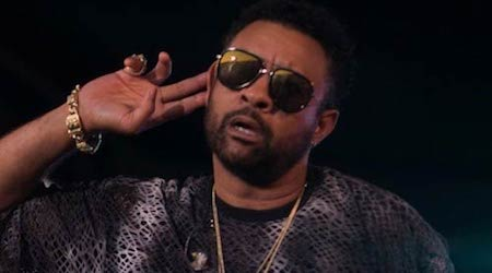 Shaggy (Musician) Height, Weight, Age, Body Statistics