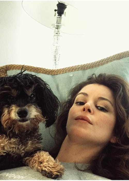 Nora Zehetner in a selfie with her dog as seen in April 2018