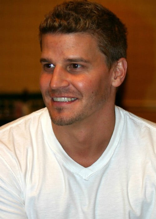 David Boreanaz at the Flashback Weekend in Chicago in May 2004
