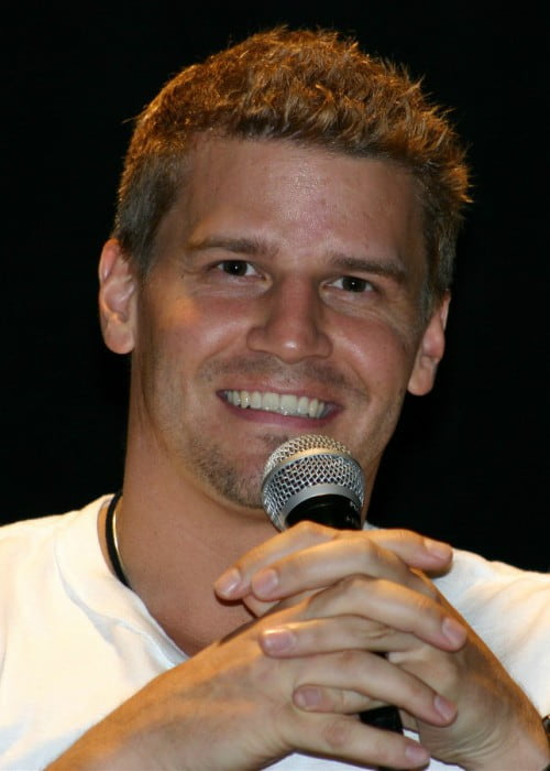 David Boreanaz at the Flashback Weekend in May 2004