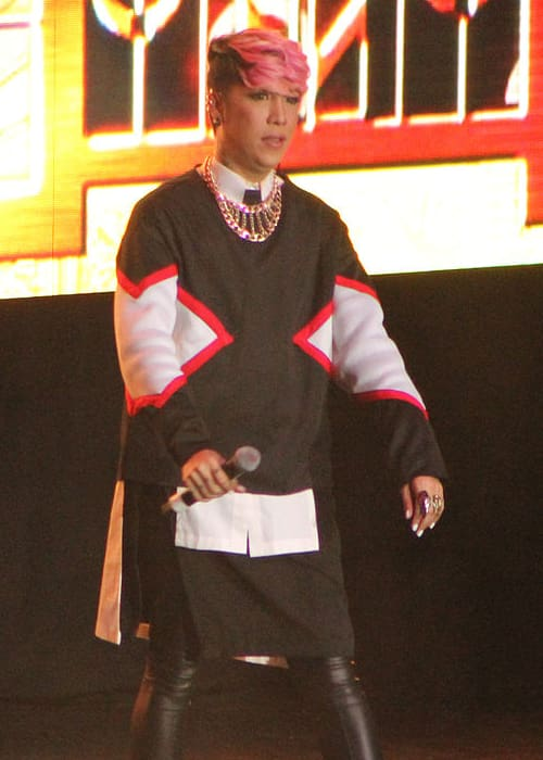 Vice Ganda at the ABS-CBN's concert tour in June 2014