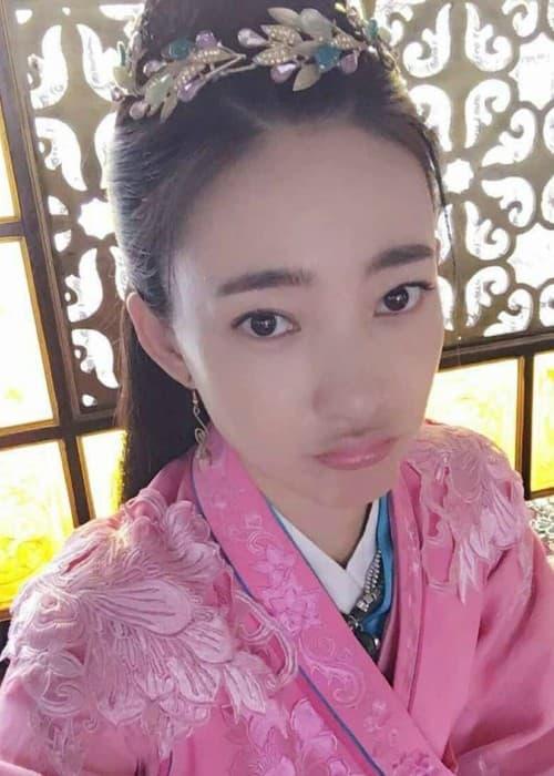 Wang Likun in a selfie in June 2016