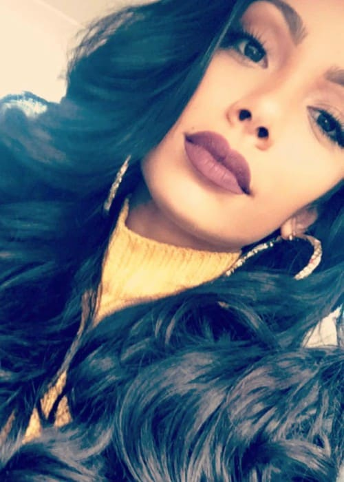 Erica Mena in an Instagram selfie as seen in November 2016