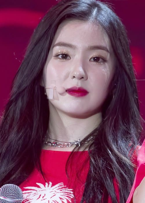 Irene at Wonder K Concert in May 2018