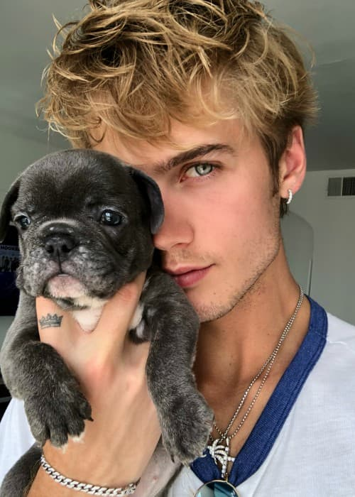 Neels Visser in an Instagram post as seen in June 2018