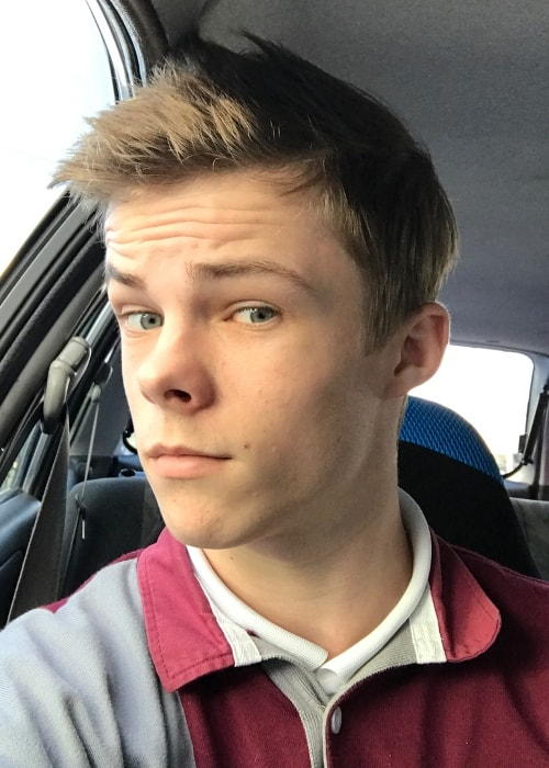 Nicholas Hamilton in a selfie in June 2017