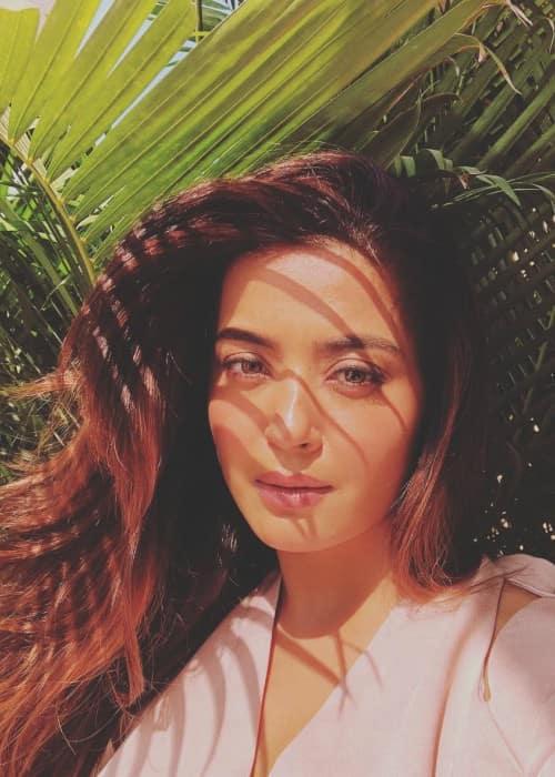 Surveen Chawla in a selfie in February 2018