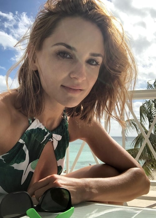 Rachael Leigh Cook in a selfie in January 2018