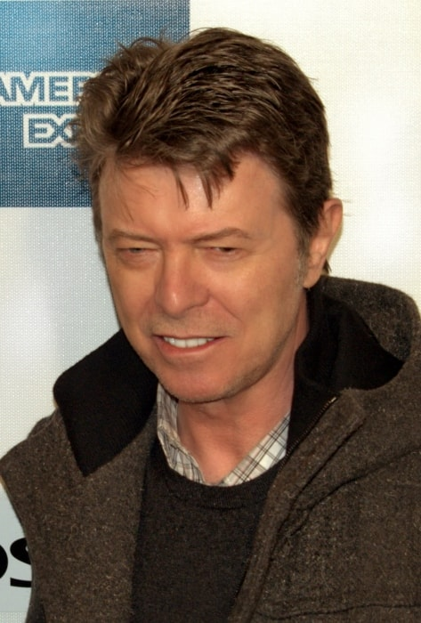 David Bowie as seen at the 2009 Tribeca Film Festival