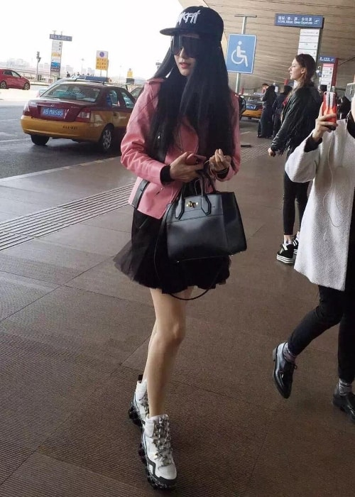 Fan Bingbing as seen in March 2016