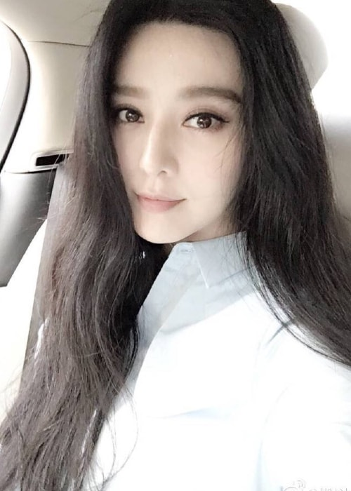 Fan Bingbing in a car selfie in April 2016