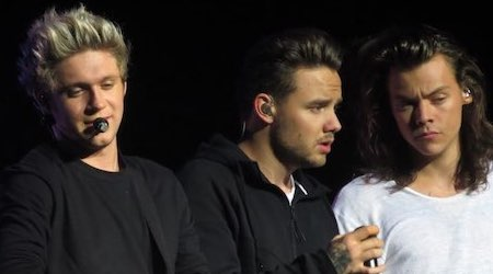 One Direction Members, Tour, Information, Facts