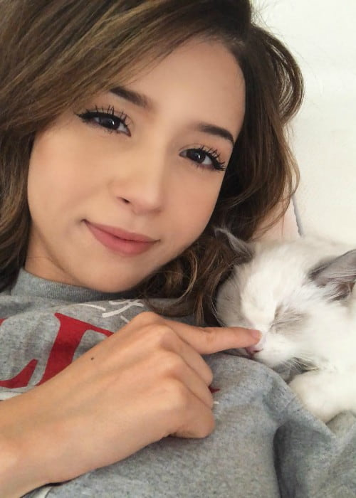 Pokimane in an Instagram selfie with her cat as seen in July 2018