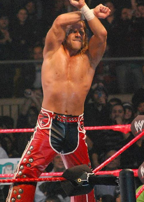 Shawn Michaels during a match in July 2008