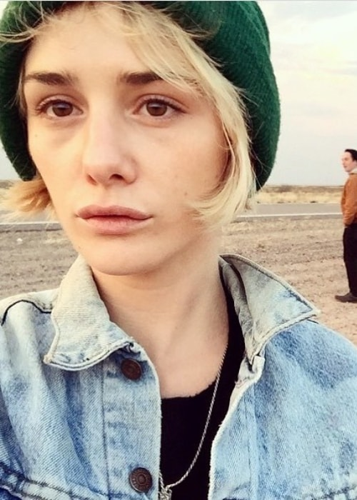 Addison Timlin sporting short hair in a selfie