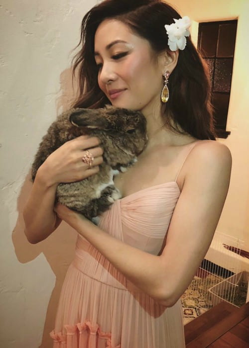 Constance Wu with her pet rabbit as seen in August 2018