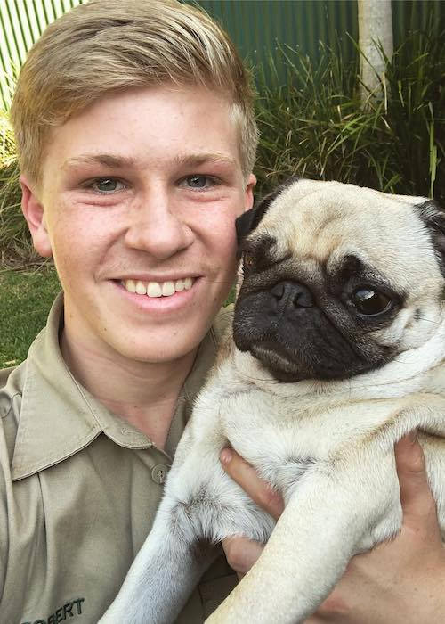 Robert Irwin with Stella The Pug dog in 2018
