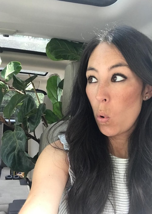 Joanna Gaines in a car-selfie with a plant in her backseat in June 2017