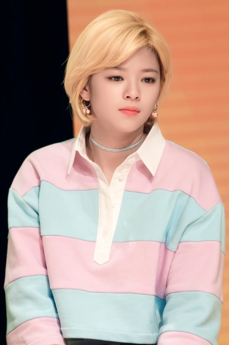 Jeongyeon as seen at Twice Sudden Attack Fan Meeting in March 2017